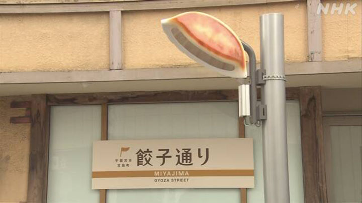 The street lights of the shape of Gyoza in Utsunomiya City that became a symbol of gyoza street!